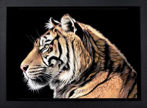 The Wild Side II by Darryn Eggleton - Framed Box Canvas